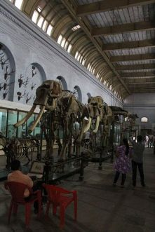 31_museo_nazionale